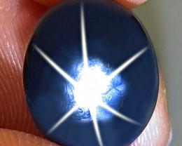 7.71 Carat Thailand Blue Star Sapphire - Gorgeous