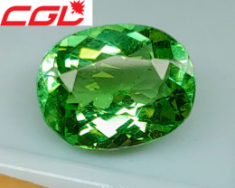 NR! Gorgeous! CGL-GRS Unheated 2.60 CT Green Kunar Tourmaline