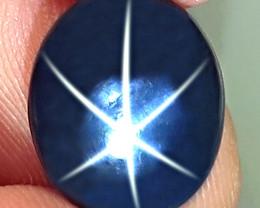 5.94 Carat Thailand Blue Star Sapphire - Gorgeous
