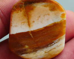 INDONESIAN PETRIFIED WOOD OPAL AA GRADE 38.60 CRT