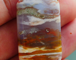 RARE INDONESIAN PETRIFIED WOOD OPAL AA GRADE 30.00 CRT