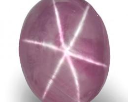 Sri Lanka Fancy Star Sapphire, 6.20 Carats, Soft Pinkish Violet Oval