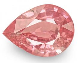 IGI Certified Sri Lanka Padparadscha Sapphire, 0.66 Carats, Orangy Pink