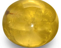 GIA Certified Sri Lanka Yellow Sapphire, 61.33 Carats, Golden Yellow Oval