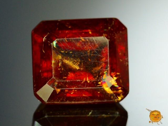 tripilite gem sold at auction