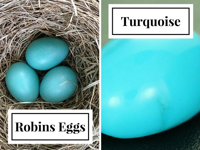 robins eggs and turquoise
