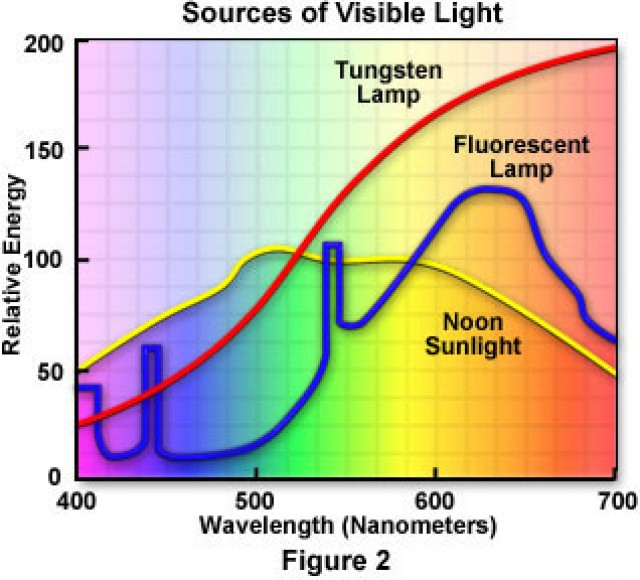 visible wavelengths of light