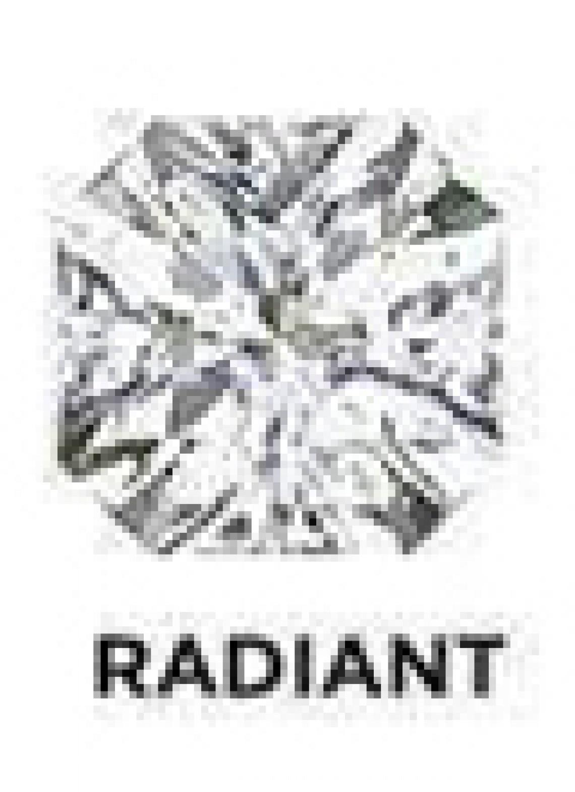 Radaint cut Diamond