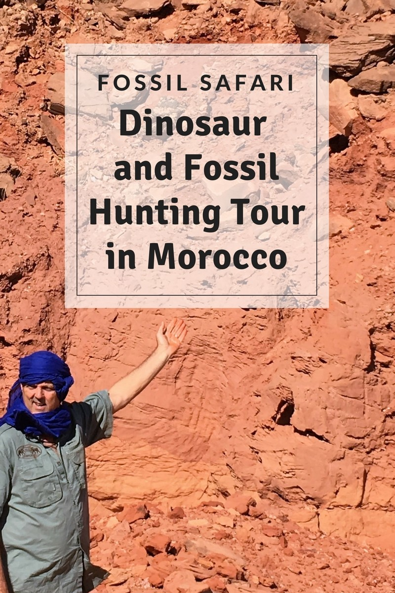 Fossil Safari - Dinosaurs and Fossil Hunting In Morocco | Gem Rock on plot design, cave glass, cave pool, mansion design, cave house floor plans, lodge design, cave house interior, cave architecture, tower design, parking design, cave space, triplex design, cave doors, cave building, vineyard design, building design, castle design, cave landscape, mobile home design, cave lighting,