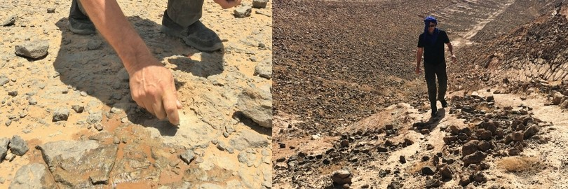 hunting for fossils in morocco