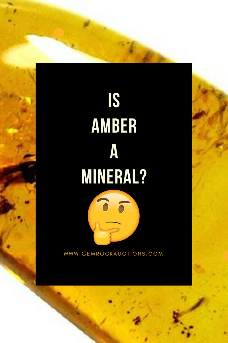 Is Amber a Mineral