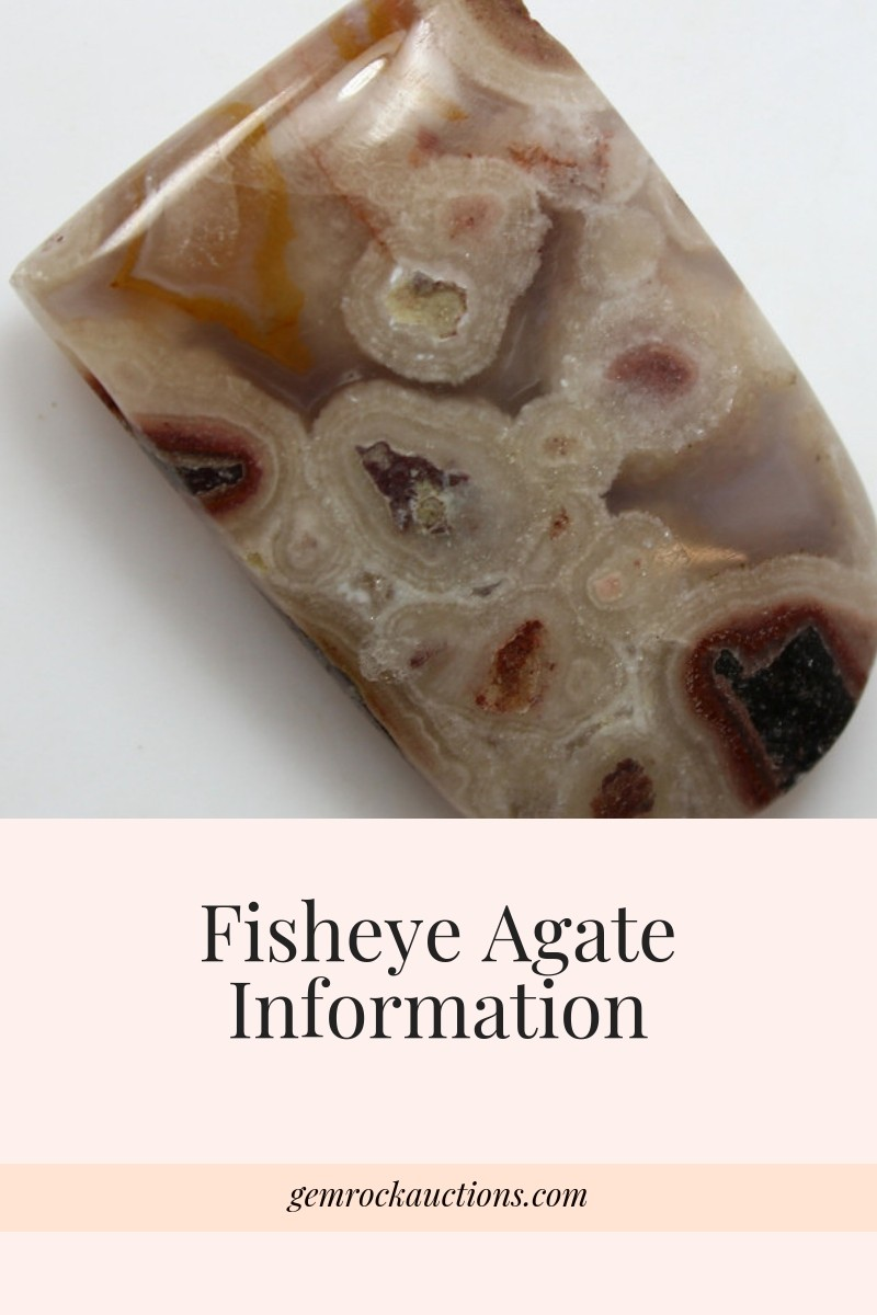 Fossil Fisheye Agate Information