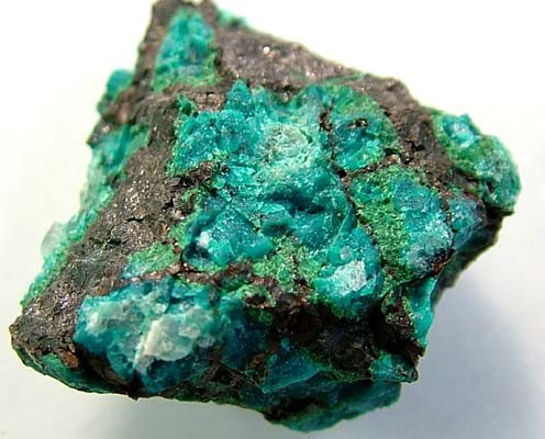 (MGW) CHYSOCOLLA SPECIMEN FROM UTAH USA 85 CTS FP 773