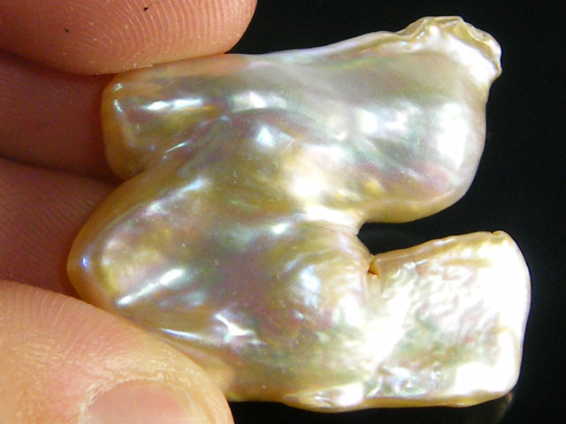 LARGE HIGH LUSTRE QUALITY  KESHI PEARL  45CTS SG1370