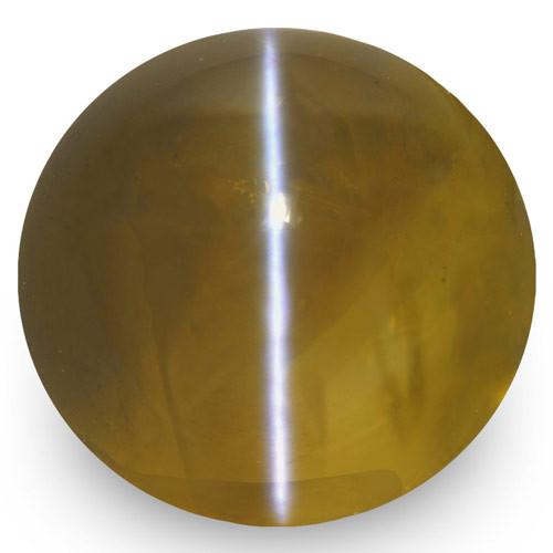 IGI Certified Madagascar Chrysoberyl Cat's Eye, 10.26 Carats, Honey Oval
