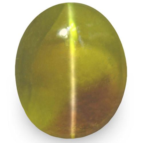 IGI Certified Sri Lanka Chrysoberyl Cat's Eye, 3.00 Carats, Yellowish Green