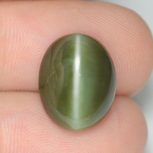 7.29 Carat Very Rare Actinolite Cats Eye Gemstone