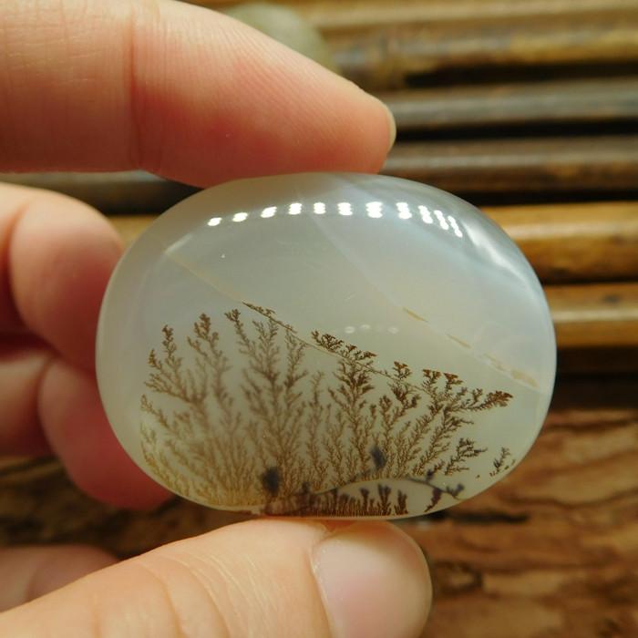 Landscape cabochon picture jasper bead (G1338)