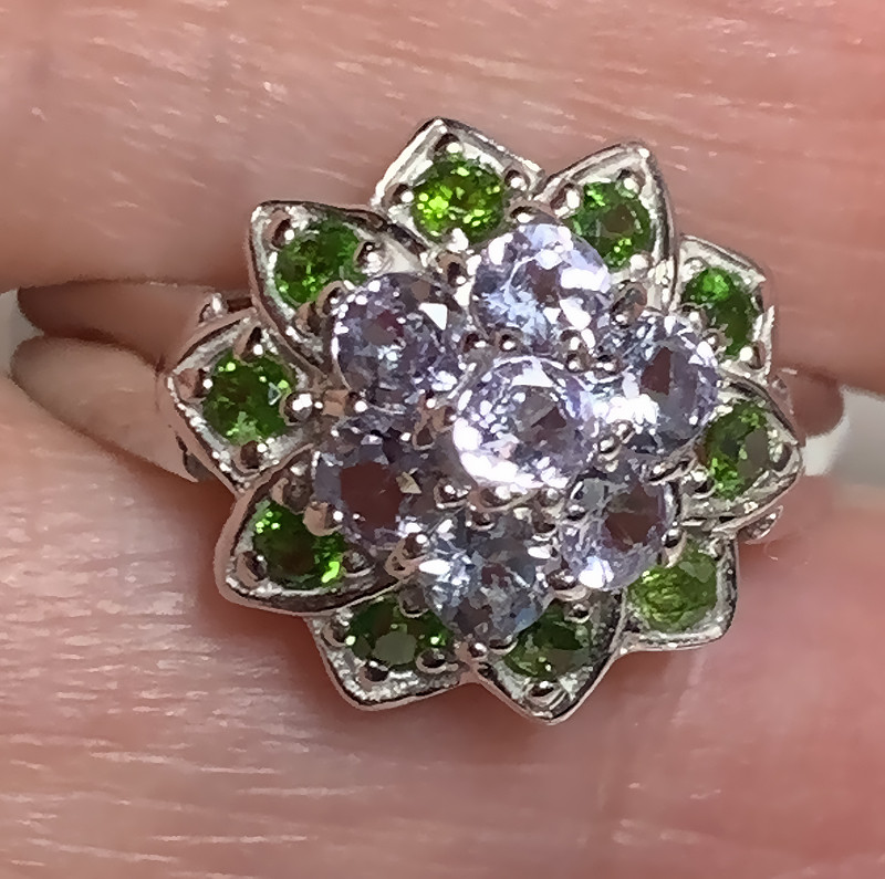 Sparkling Tanzanite Chrome Diopside Sterling Silver Ring Size 8.5