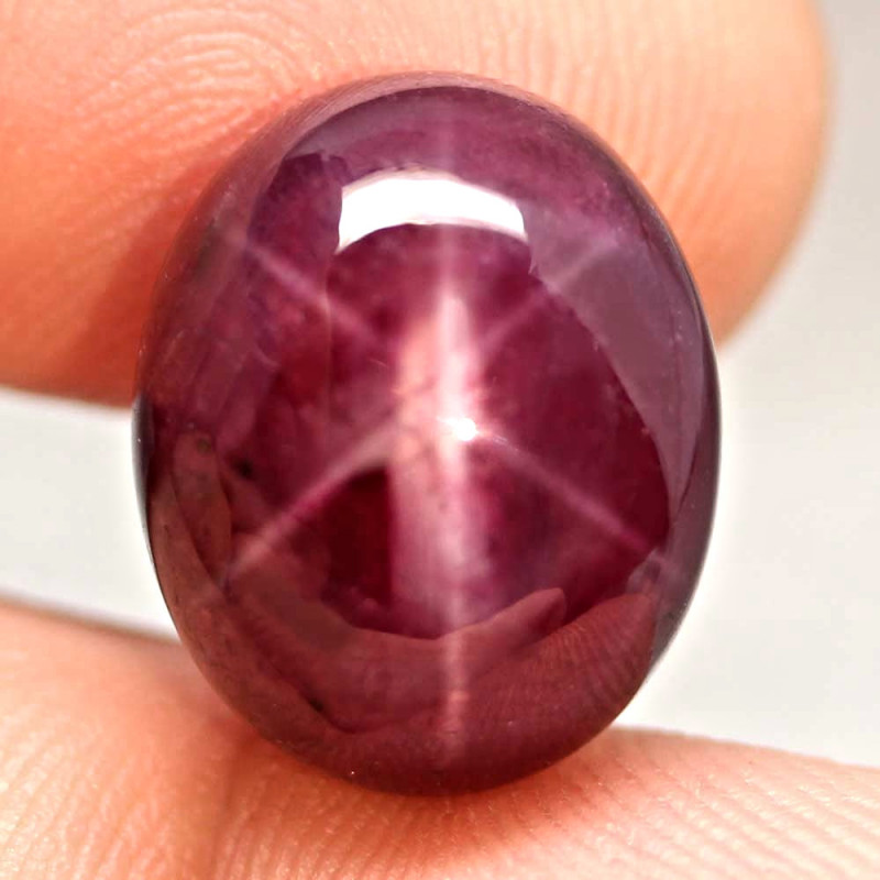 24.93 Carat Star Ruby - Gorgeous