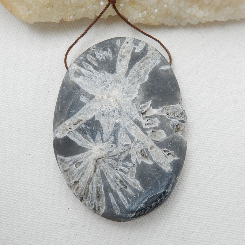 Natural Chrysanthemum Fossil Gemstone Stone Pendant, 72x52x11mm H9962