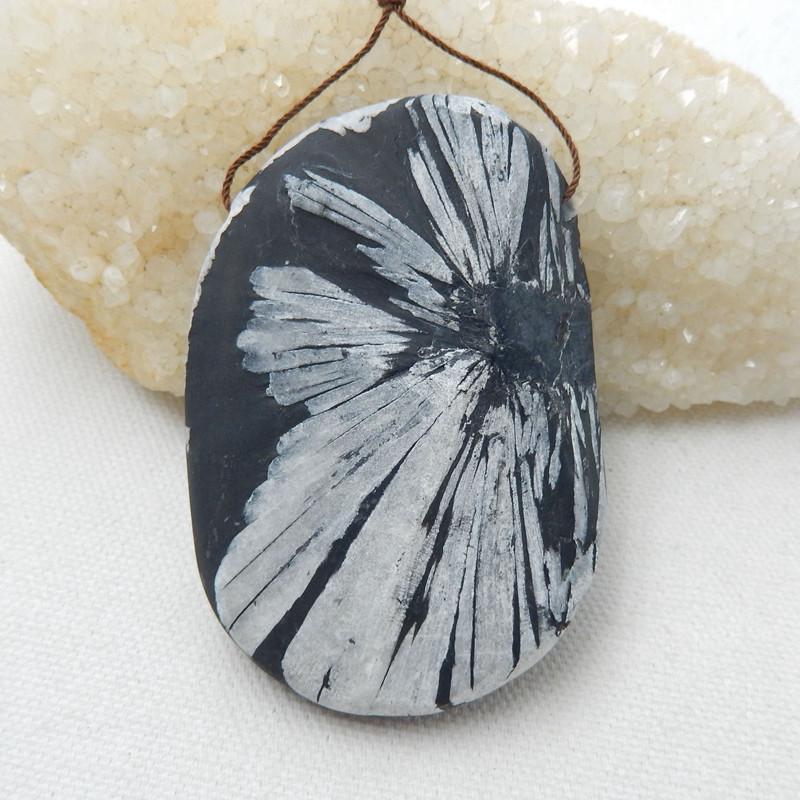 Natural Chrysanthemum Fossil Gemstone Stone Pendant H9957