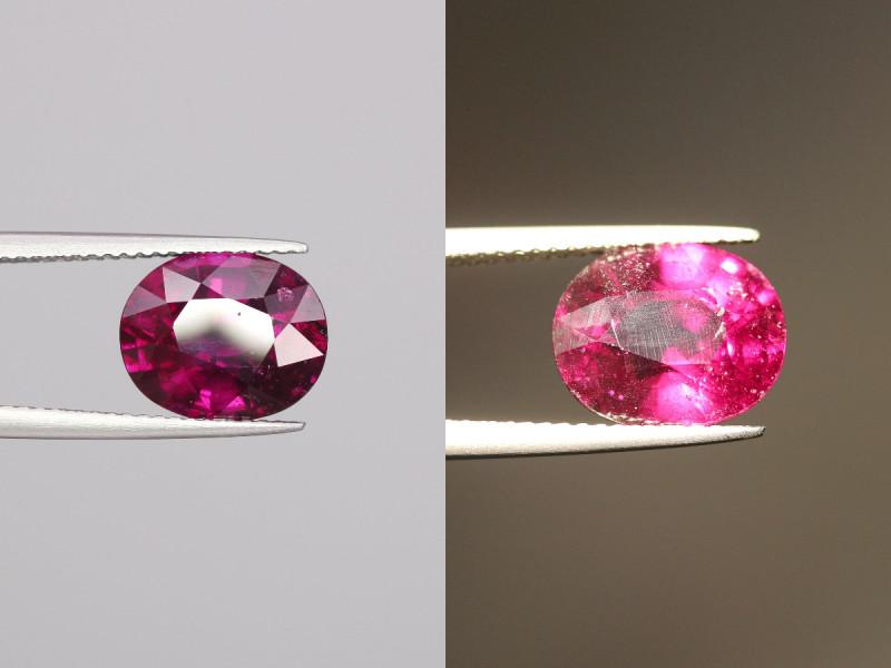 5.2 Cts Red To Purple  Garnet Gems.