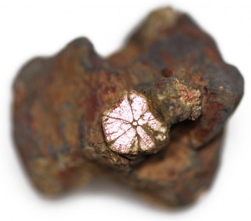 28.90 CTS RARE GOLDEN PINK CHERRY BLOSSOM SPECIMEN- JAPAN  [MGW5463]