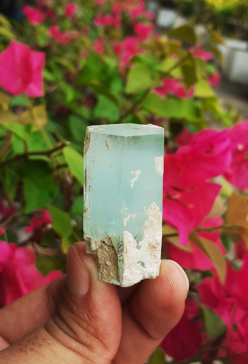 151.00ct Natural Multi Terminated Aquamarine Crystal