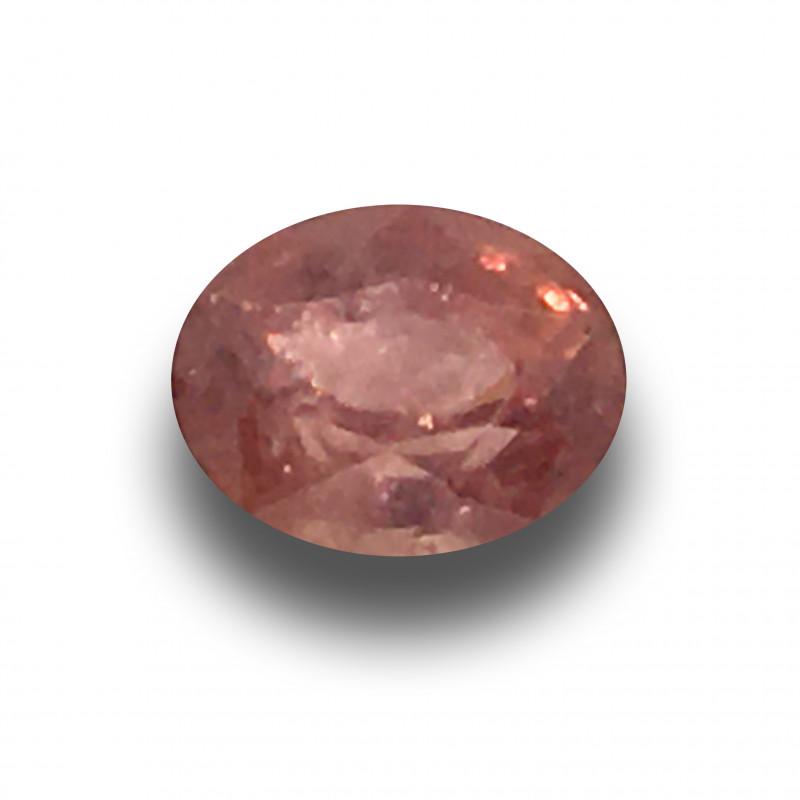 Natural Padparadsha |Loose Gemstone|New| Sri Lanka