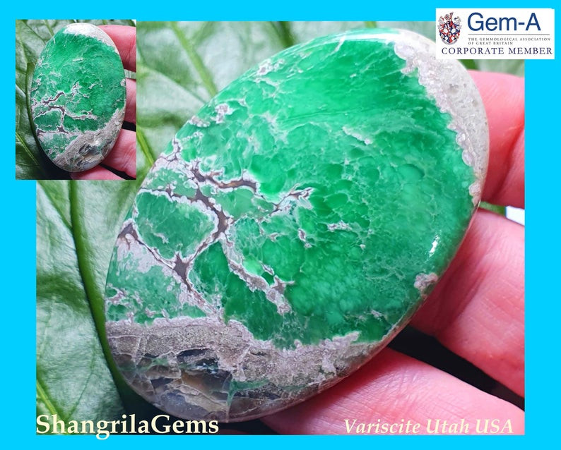 60mm 113ct Variscite Green cabochon oval Lucin, Utah USA 60 by 40 by 5.5mm