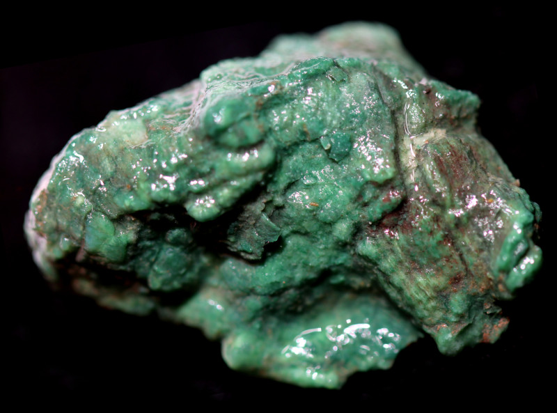 48.77 CTS NATURAL GREEN WOOD FOSSIL [MGW5722]