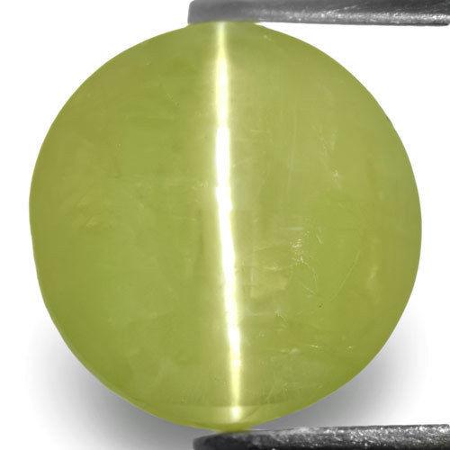 India Chrysoberyl Cat's Eye, 6.51 Carats, Greenish Yellow Oval