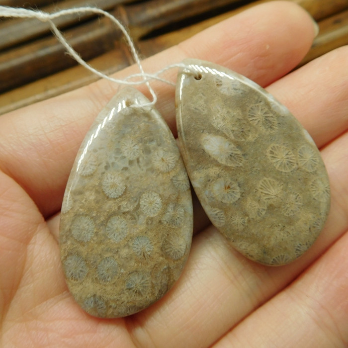 Fossil coral earring bead (G1875)