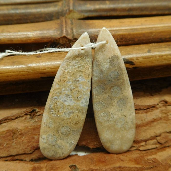 Fossil coral earring bead (G1881)