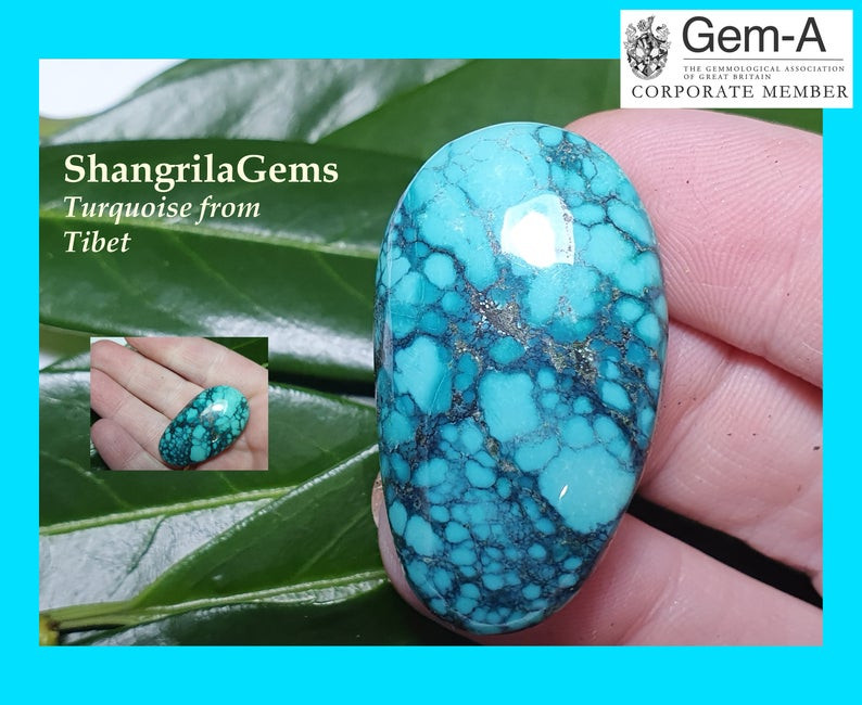 39mm 62ct Tibetan turquoise cabochon spiders web markings free form 39 by 2