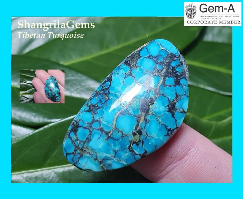 37mm 42ct Tibetan turquoise cabochon free form 37 by 20.5 by 6.5mm approx