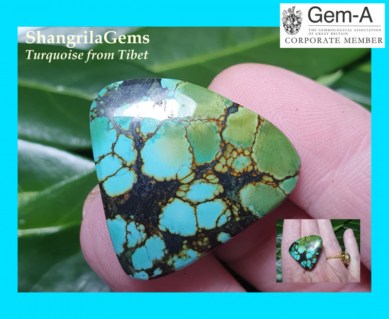 30mm 45ct Tibetan turquoise cabochon spiders web markings free form 30 by 2