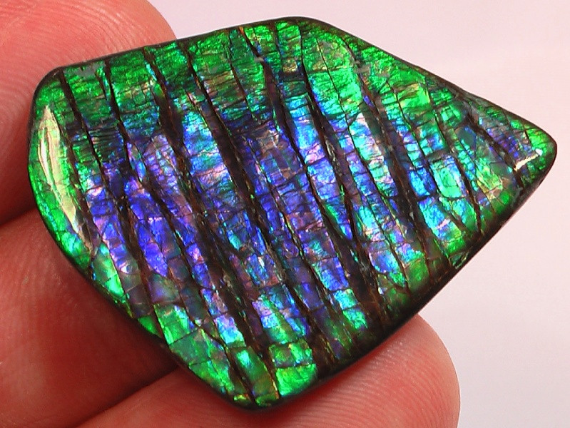 AMAZING PURPLES Excellent Pattern & Color Natural Ammolite Gem High Grade