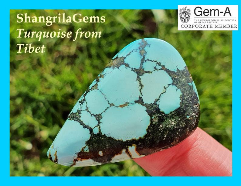 38mm 58ct Tibetan Turquoise CABOCHON 38 by 26 by 6.5mm freeform