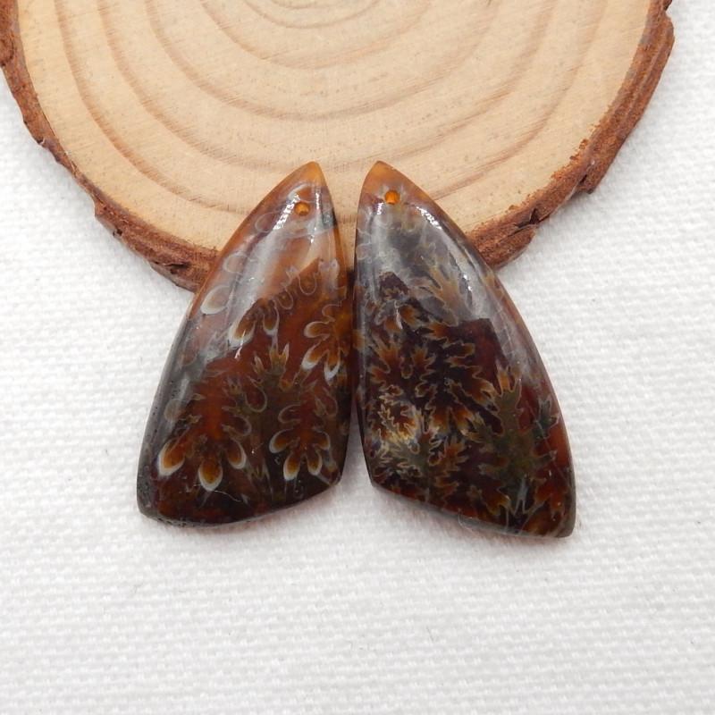 57.5cts Ammonite Fossil Earrings Handmade Earrings Gift G142