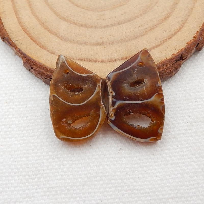22cts Ammonite Fossil Earrings Handmade Earrings Gift G138