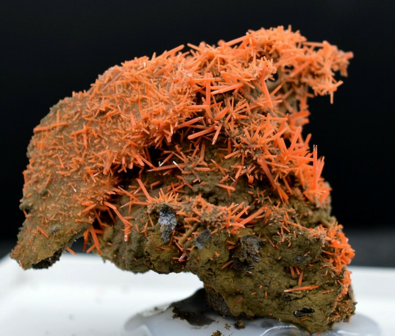 Crocoïte - 57 grammes - Dundas, Tasmanie, Australie