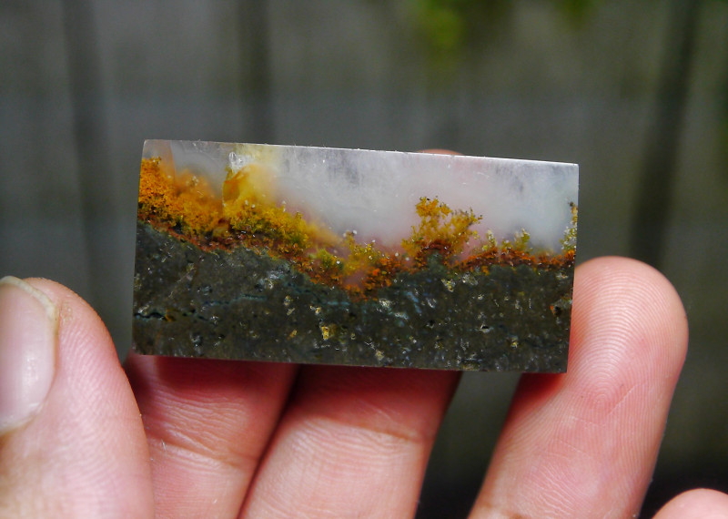 54.05 CT UNTREATED Beautiful Indonesian Moss Agate Picture