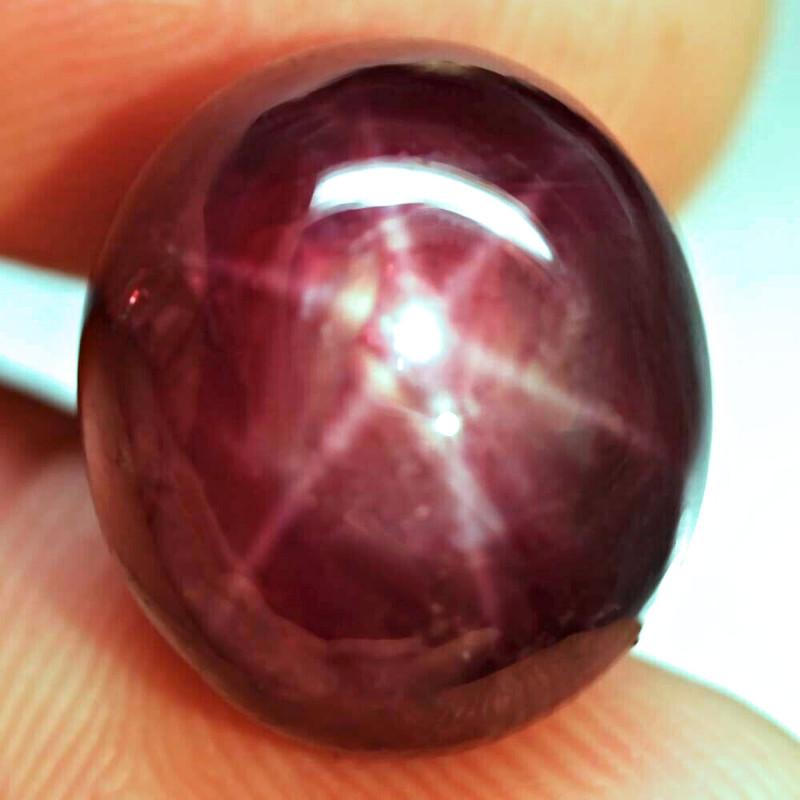 32.92 Fiery Star Ruby - Gorgeous
