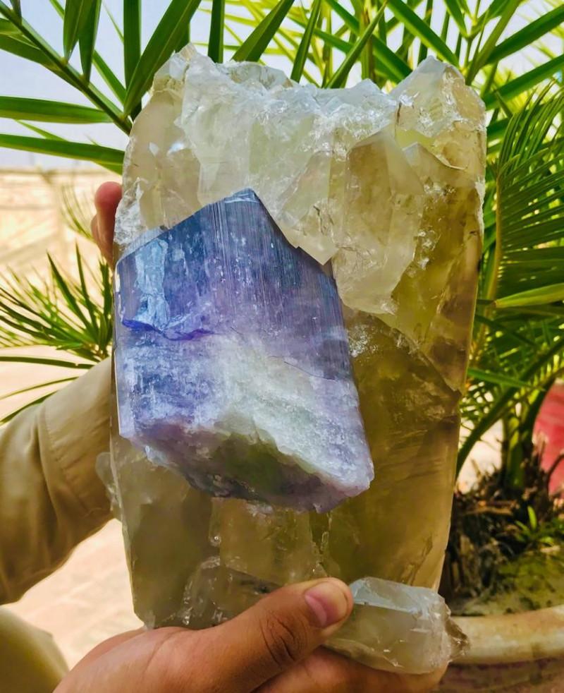 Amazing Natural color Huge Museum grade Kunzite with Quartz Specimen  32900