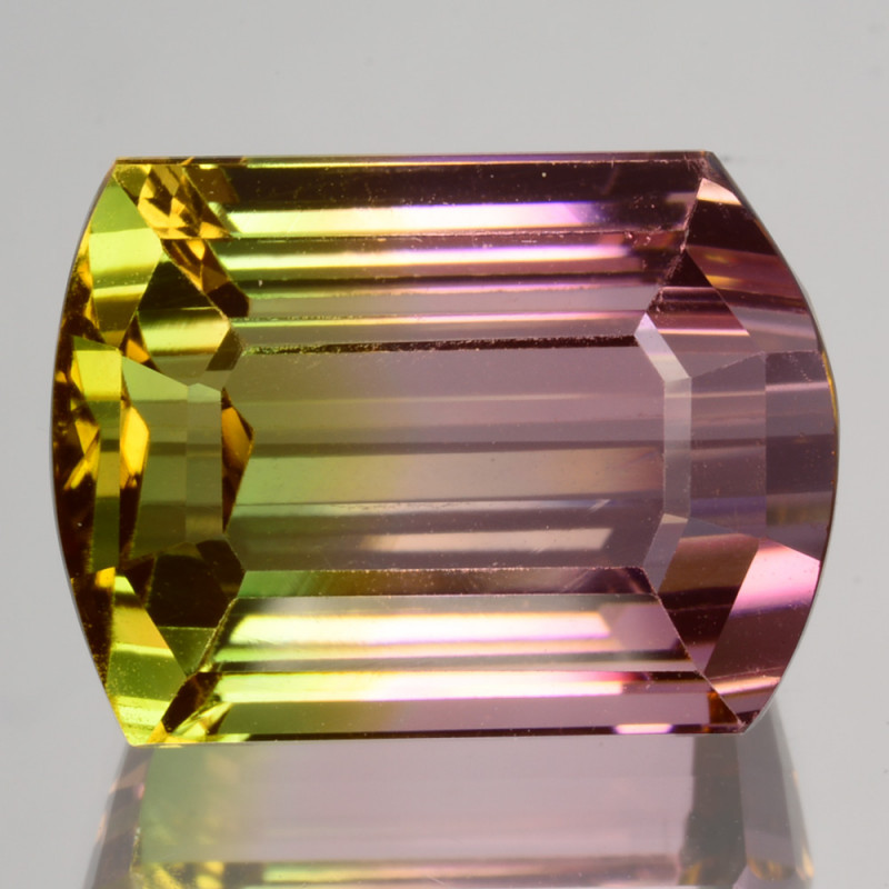 16.65Ct Natural Water melon Tourmaline Fancy Cut