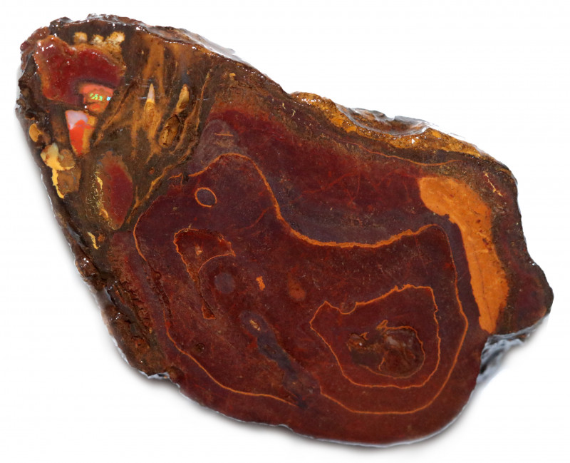 180 CTS YOWAH OPAL NUT SLICES-IRONSTONE AND OPAL [MGW8039]