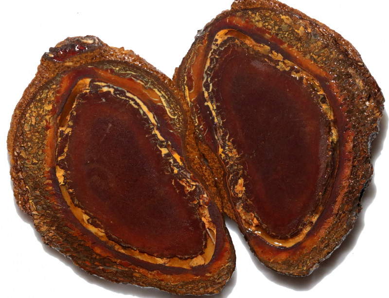 369.85 CTS YOWAH PHANTOM NUTS SPECIMEN-AUSTRALIA [MGW8074]