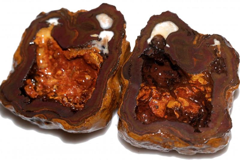 243.45 CTS YOWAH PHANTOM NUTS SPECIMEN-AUSTRALIA [MGW8079]